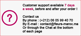 customer support